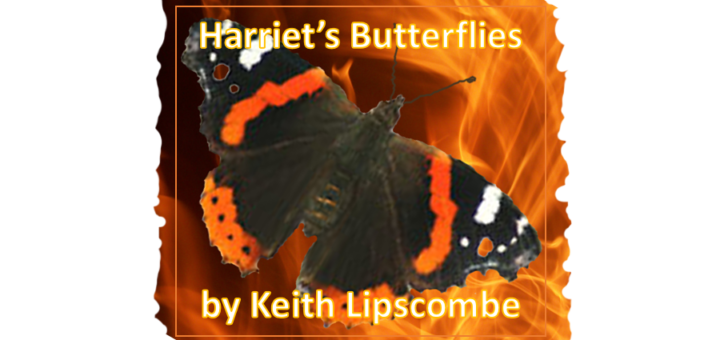Harriet's Butterflies - Book Cover #01